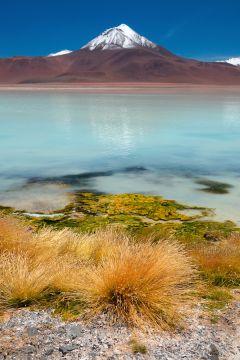 Od Patagonie po Altiplano