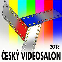 Český videosalon 2013