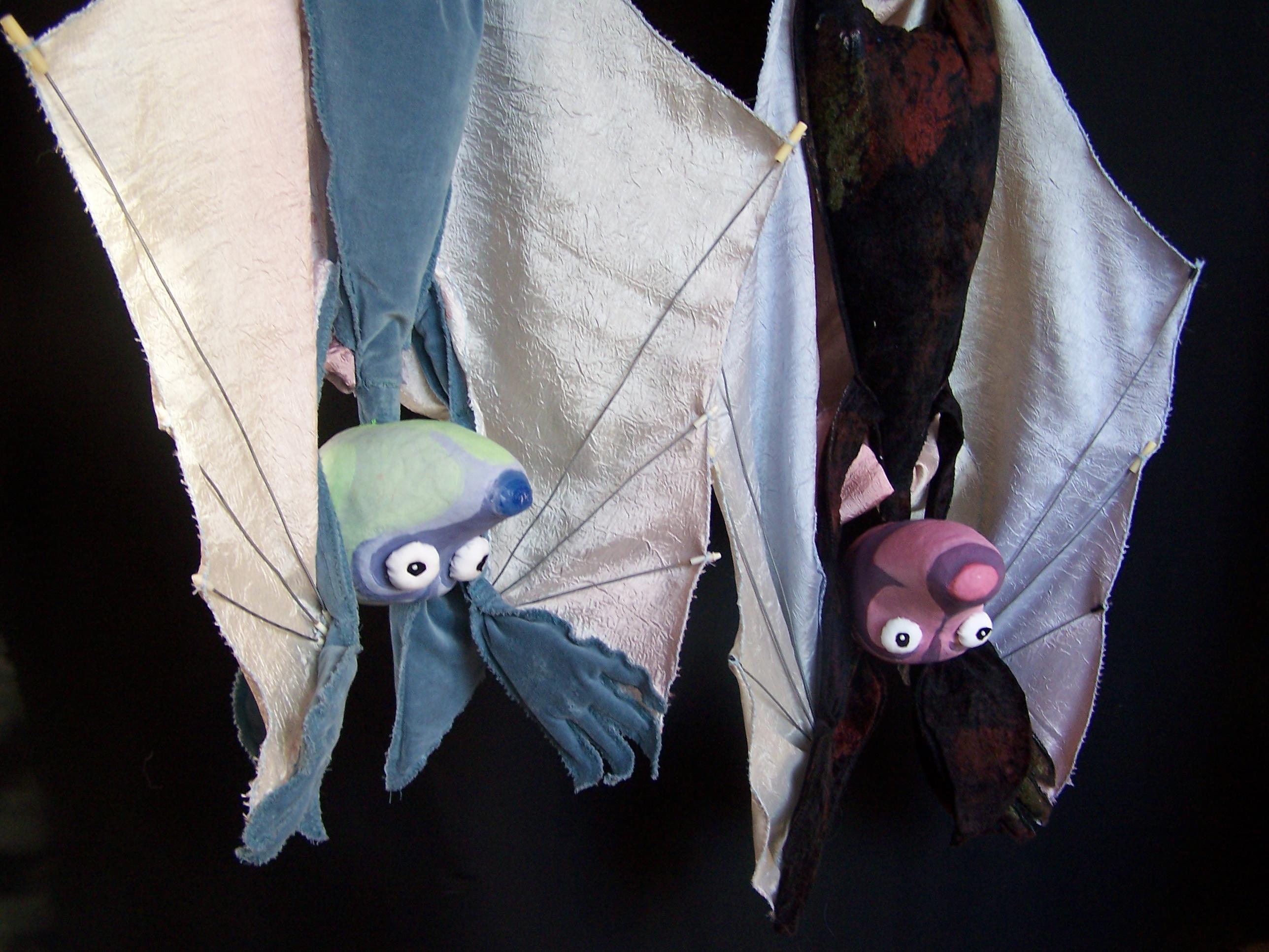 Otázky netopýra Ušíka