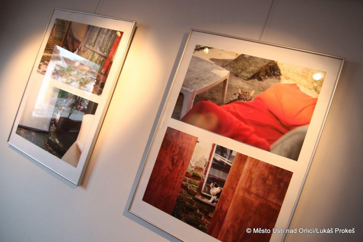 Výstava maturitních prací studentů oboru Užitá fotografie a média